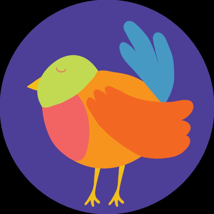 Vogels – Juf Evi – Juf Cindy