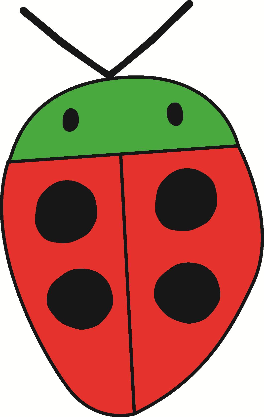 lieveheersbeestje kleur
